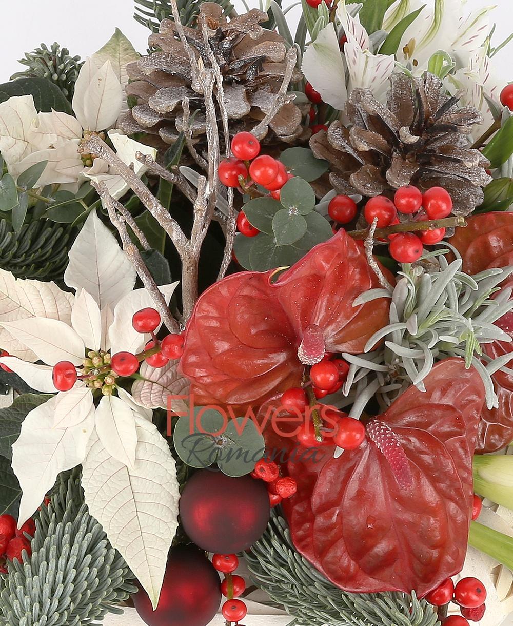 Beloved Christmass