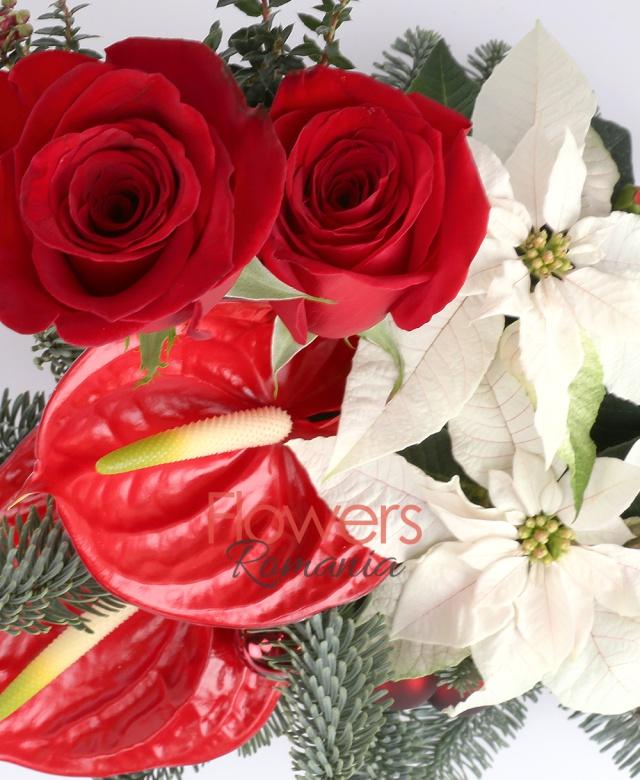 2 trandafiri roșii, 2 anthurium roșu, 2 flori poisenția, 5 globulețe, 2  hypericum roșu, brad