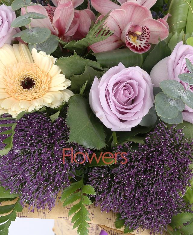 3 trandafiri mov, 3 gerbera crem, 1 cymbidium roz, 3 trahelium mov, 2 anturium verde, lavanda, aspidistra, eucalypt, feriga
