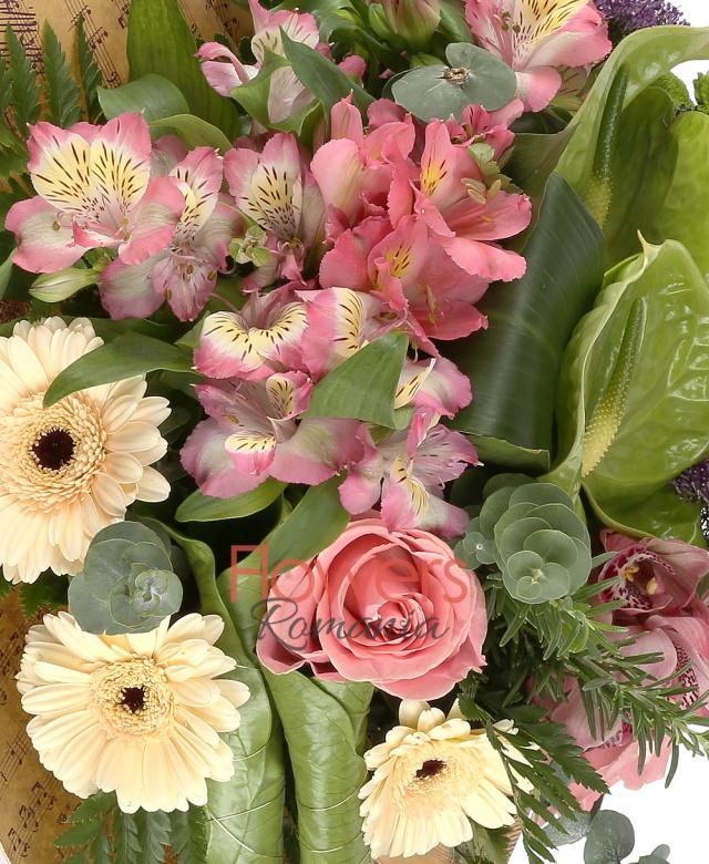 2 trandafiri roz, 3 alstroemeria roz, 2 trachelium mov, 2 santini verde, 3 gerbera crem, 1 cymbidium roz, 2 anthurium verde,eucalypt, aspidistria, frunze anthurium, ferigă
