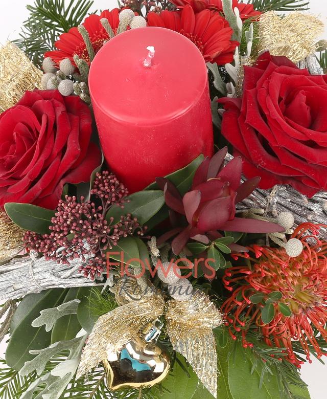 2 trandafiri, 3 gerbera rosii, 1 leucospermum, 1 leucadendron, 2 brunia, 2 schimia, 2 salal, globuleț, crengi decor, brad