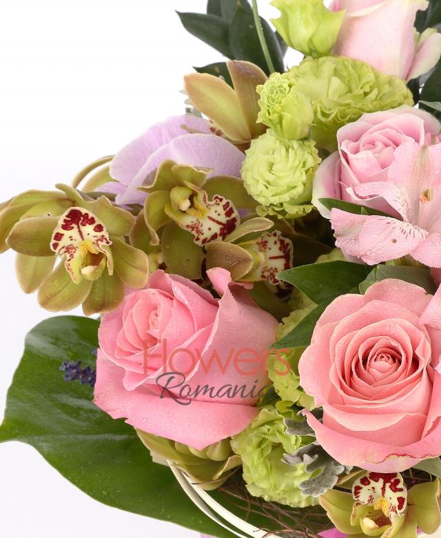 5 trandafiri roz, 2 fire alstoemeria roz, 1 cymbidium verde, 2 lishianthus verde, 1 suport nuiele, aspidistra, monstera, eucalypt, senecio, curly, levanticas, 1 orhidee phalaenopsis