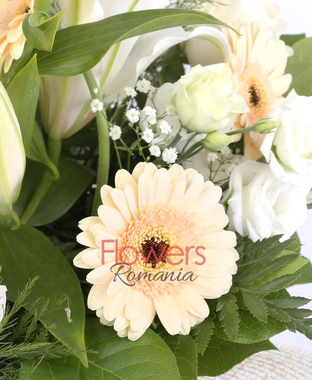 3 crini albi, 3 gerbera banan, 3 trandafiri albi, 5 lisianthus alb, 2 crizanteme albe, asparagus, gypsophila, salal
