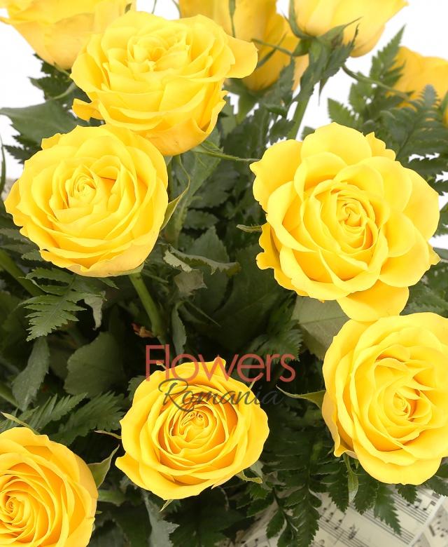17 trandafiri galbeni