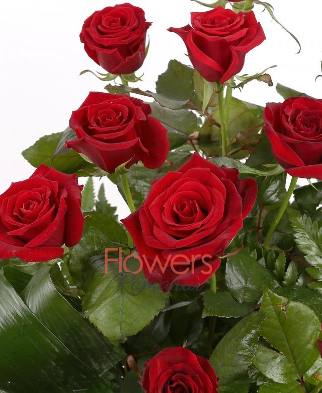 coș florentin, 25 trandafiri rosii, aspidistra, ferigă