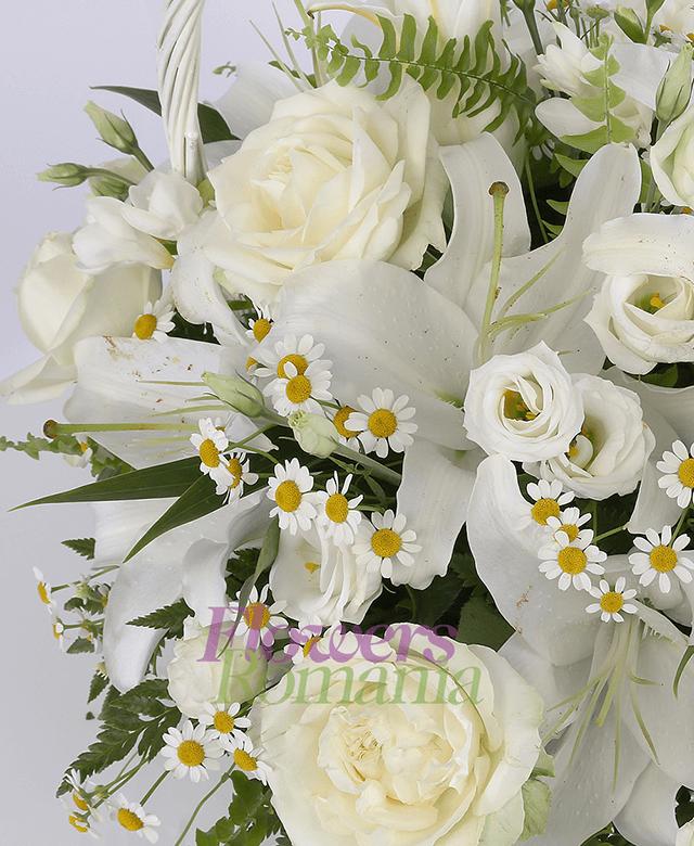 coș, 2 crini albi, 5 lisianthus alb, 5 trandafiri albi, 5 frezii albe, musețel