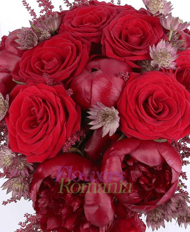 7 trandafiri rosii, 5 bujori grena, 10 astilbe, 5 astransia