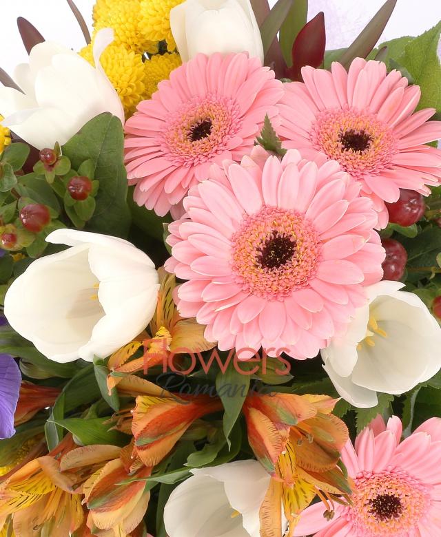 5 gerbera roz, 5 lalele albe, 5 iris mov, 5 hypericum roșu, 5 santini galben, 5 alstromelia portocalii, salal