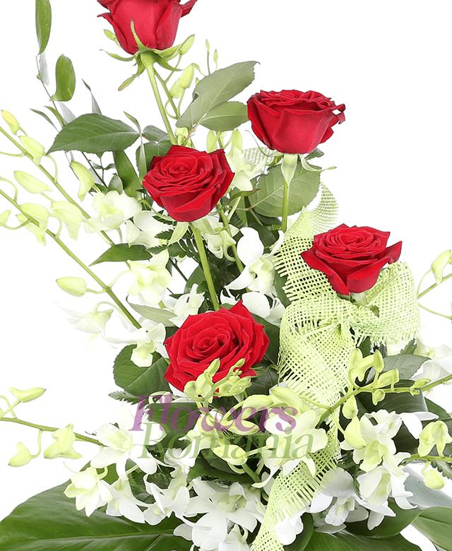 5 trandafiri rosii, 10 orhidee albe, monstera, aspidistra