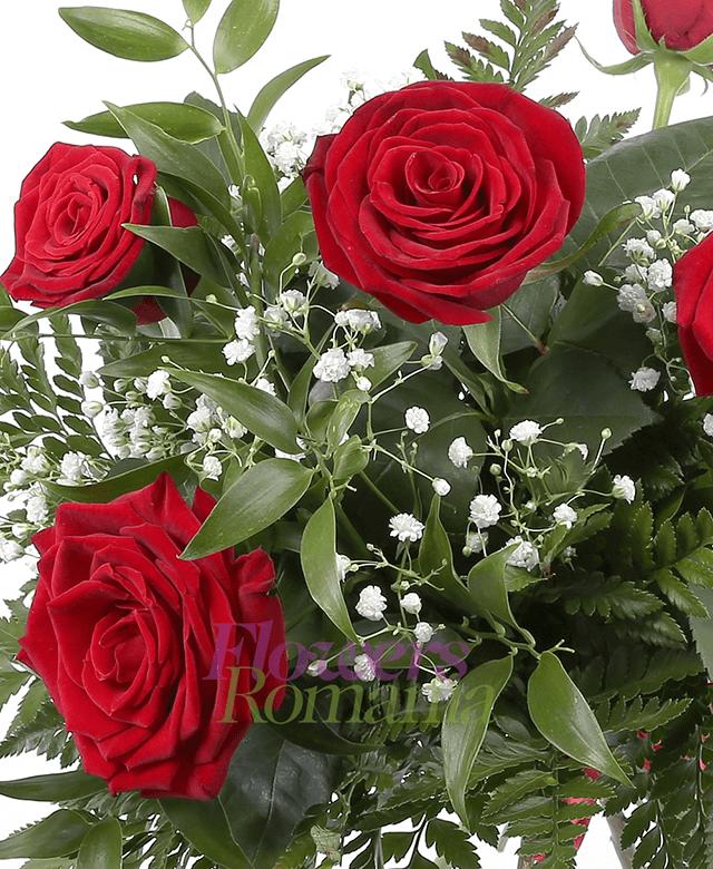 5 trandafiri rosii, ruscus, gypsophila
