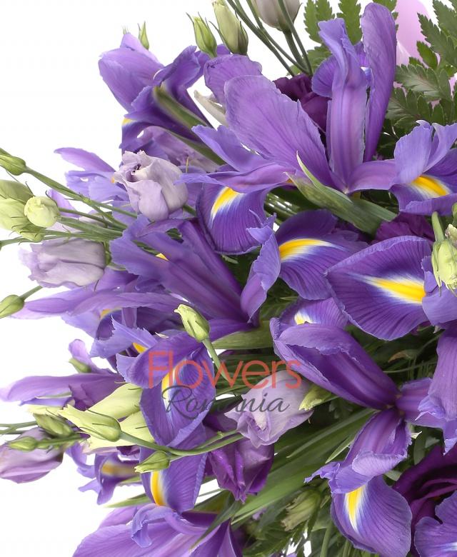 10  lisianthus mov , 15 iris mov