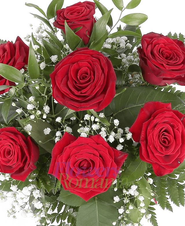 7 trandafiri rosii, ruscus, gypsophila
