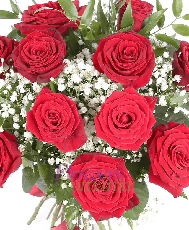 11 trandafiri rosii, ruscus, gypsophila