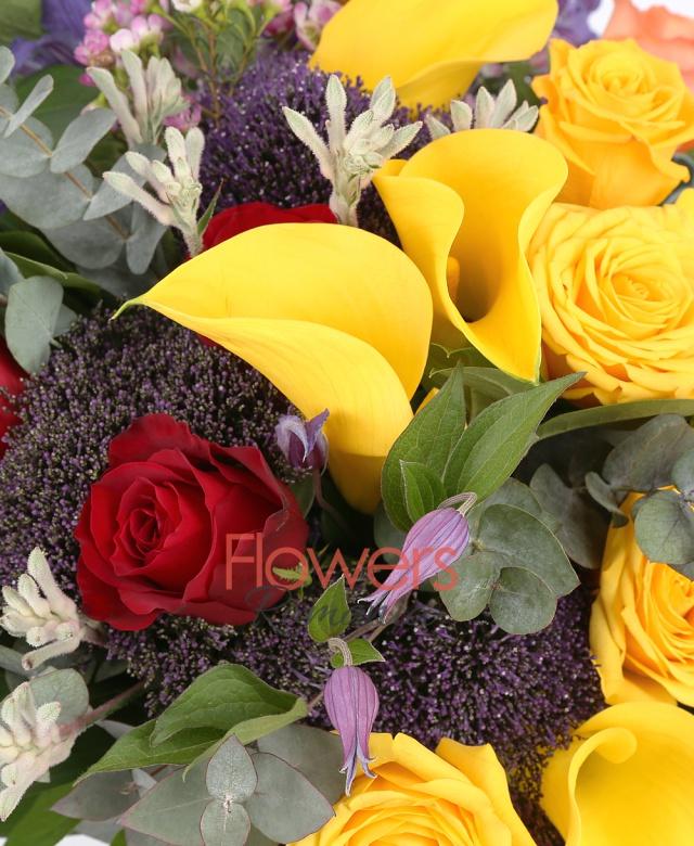 3 trandafiri portocalii, 4 trandafiri galbeni, 3 trandafiri rosii, 5 cale galbene, 3 trachelium mov, 2 anigozanthos, 2 anthurium verde, waxflower, clematis, aspidistra, eucalypt, salal