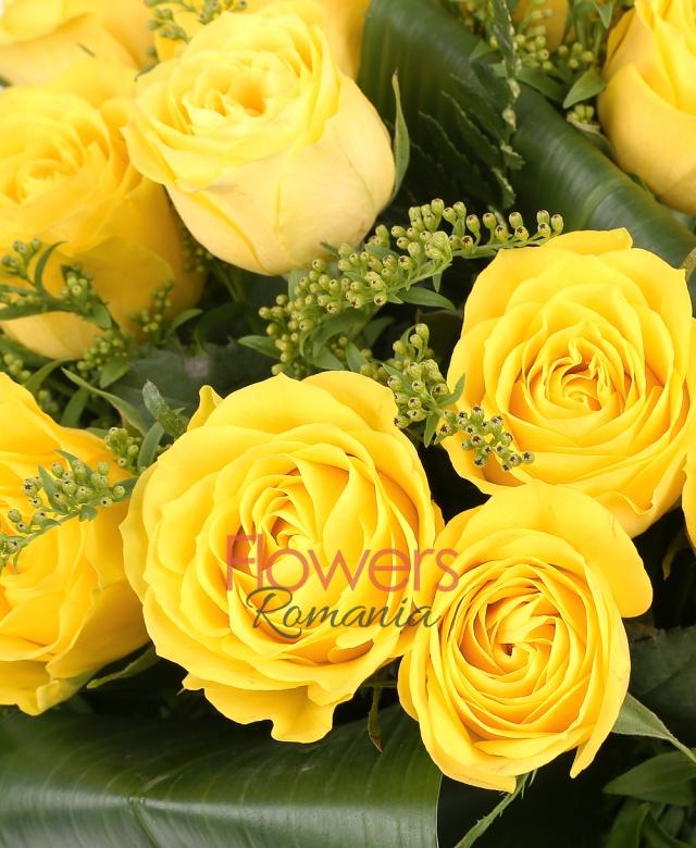 19 trandafiri galbeni, 6 solidago, aspidistra
