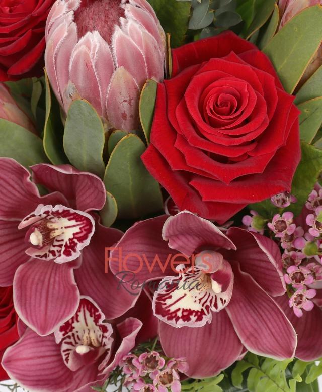 5 proteea, 5 trandafiri rosii, 1 cymbidium grena, wax flowers