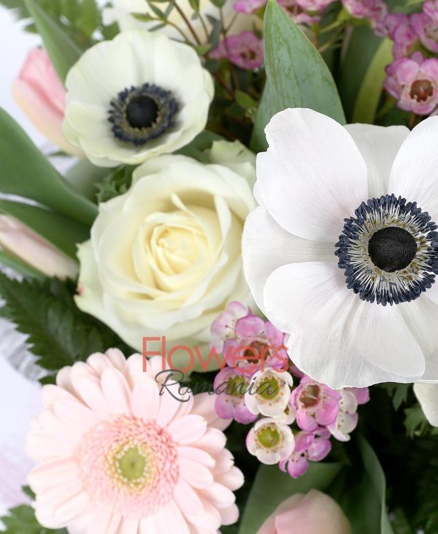 5 trandafiri albi, 3 gerbera roz, 7 lalele roz, 5 ranunculus alb, waxflower