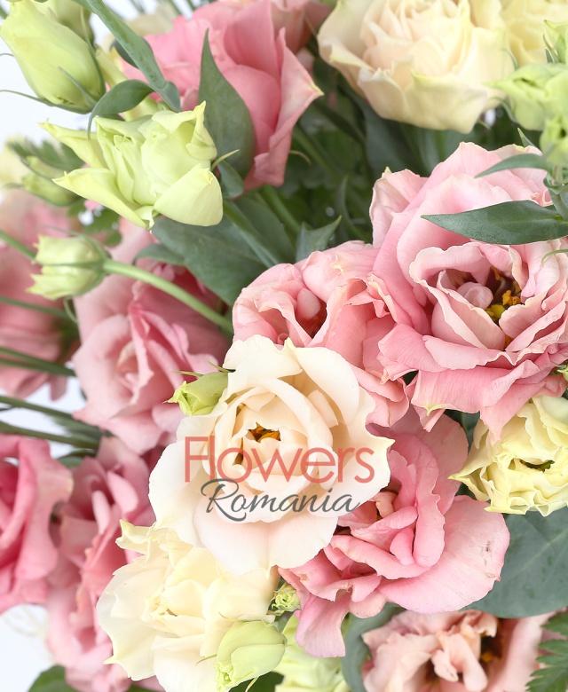 9 lisianthus roz, 2 aralia