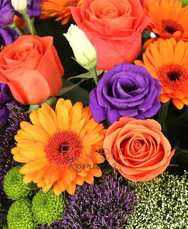 7 trandafiri portocalii, 5 gerbera portocalie, 4 lisianthus mov, 3 santini, 5 trachelium mov, 4 trachelium alb