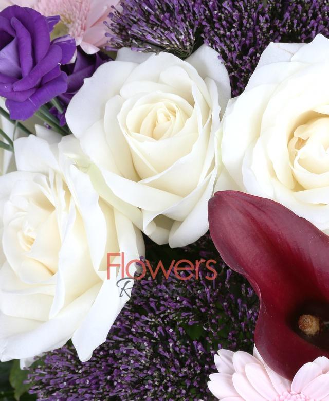 9 trandafiri albi, 7 cale mango, 7 gerbera roz, 5 lisianthus mov, 6 trachelium mov, salal