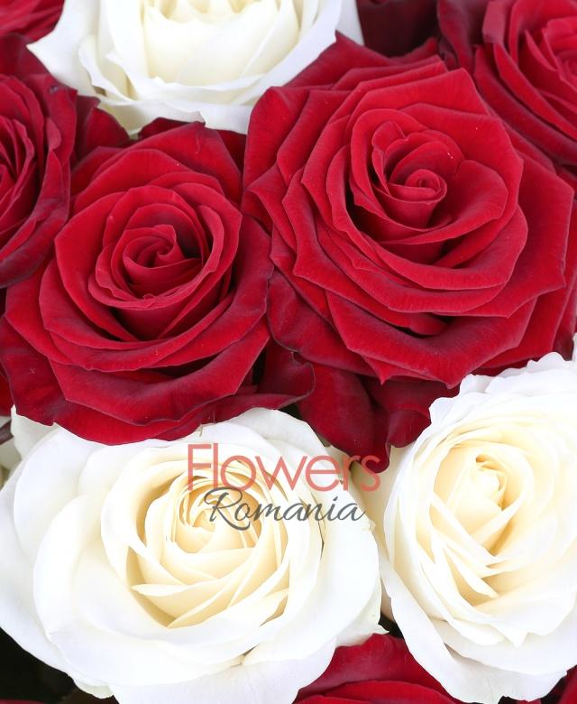 11 trandafiri albi, 20 trandafiri rosii
