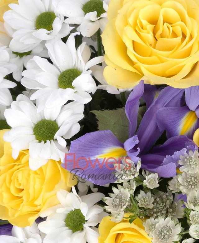 9 trandafiri galbeni, 10 iriși mov, 4 crizanteme albe, astranția,