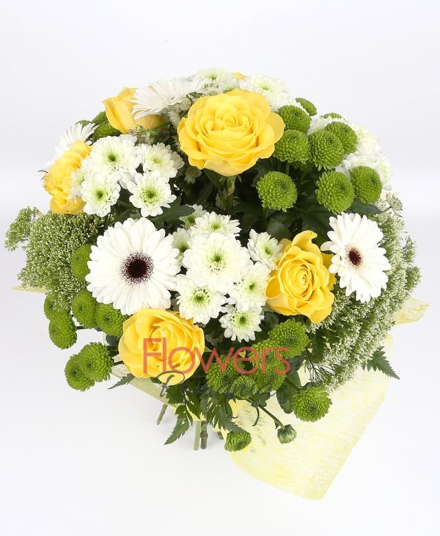7 yellow roses, 5 white gerbera, 4 chrysanthemums, 4 green santini, 4 white trachelium, astranția