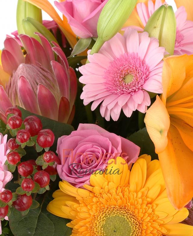 2 crin portocaliu, 4 gerbera roz, 3 trandafiri roz, 3 trandafiri galbeni, 3 gerbera galbene, 3 hypericum roșu, 2 proteea, ferigă