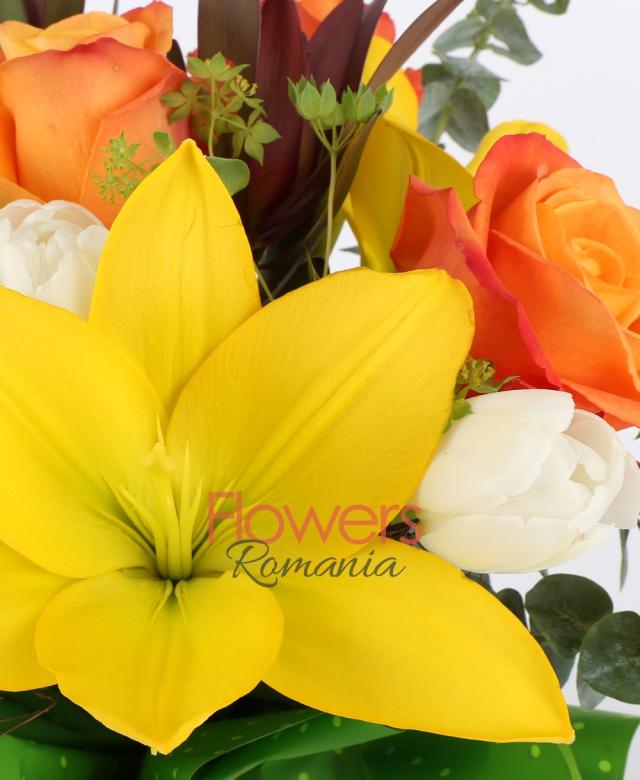 3 trandafiri portocalii, 5 lalele albe, 2 crin galben, 2 leucadendron, 2 hypericum verde, eucalypt, bupleurum, salal, cuib