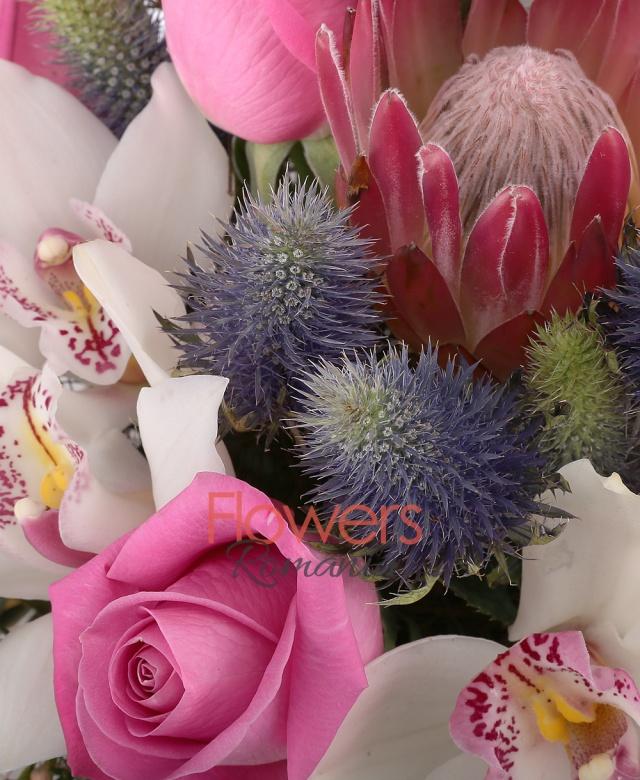 5 trandafiri roz, 2 eryngium, 1 cymbidium alb, 2 proteea , 2 gerbera roz, waxflower alb, eucalypt, 2 leucadendron, cuib