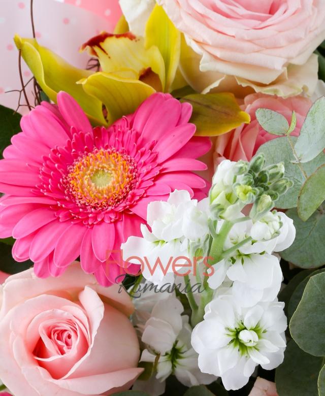 7 trandafiri roz, 3 gerbera roz, 5 mattiola alba, 1 cymbidium verde, eucalypt, salal, cuib