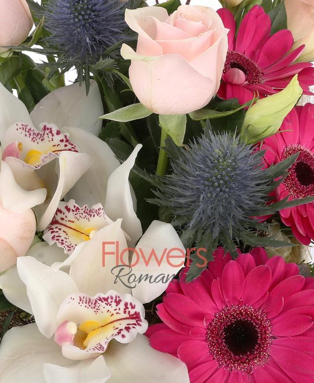 5 trandafiri roz, 2 eryngium, 3  gerbera ciclam, 1 cymbidium alb, brunia, 2 lisianthus roz, beargrass, cuib