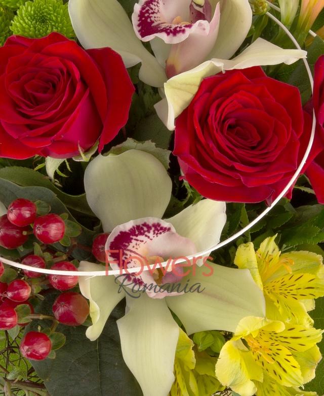5 trandafiri roșii, 3 alstroemeria galbenă, 3 hypericum roșu, 1 santini verde, 1 cymbidium verde, salal, iedera, curly, cuib