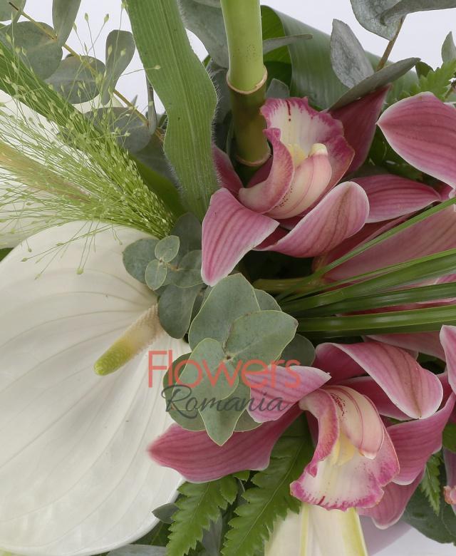 3 anthurium alb, 5 cupe orhidee grena, 1 crin alb , panicum, aspidistra, 1 bambus, eucalypt, salal, vas
