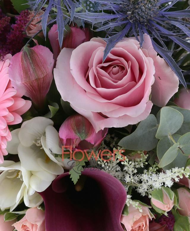 5 fire garoafe crem, 3 fire trandafiri roz, 2 cale rosii, 2 fire santini alb, 2 fire gerbera roz, 3 fire minitros roz, 3 astilbe rosii, 3 astranția alba, 2 eryngium, 5 frezii albe, 3 alstroemeria roz, 3 panicum, 3 astilbe albe, 5 eucalypt, 2 waxflower