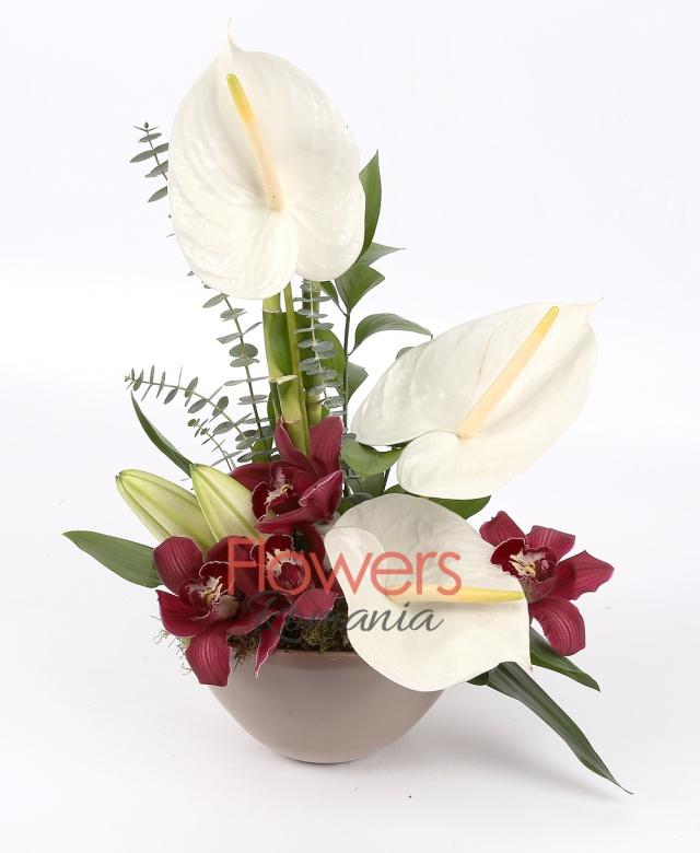 3 white anthurium, cups of burgundy cymbidium , 1 white lily, 1 bamboo, greenery