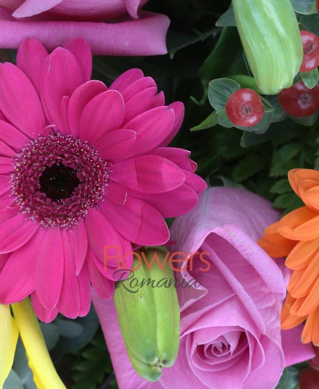 3 crin galbeni, 5 trandafiri roz, 5 gerbera ciclam, 2 gerbera portocalii, 5 hypericum, 2 proteea rosii, 5 eucalypt, 10 ferigă