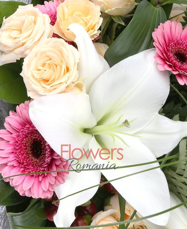 3 crini albi, 7 miniroze crem, 6 gerbera roz, 5 hypericum roșu, beargrass