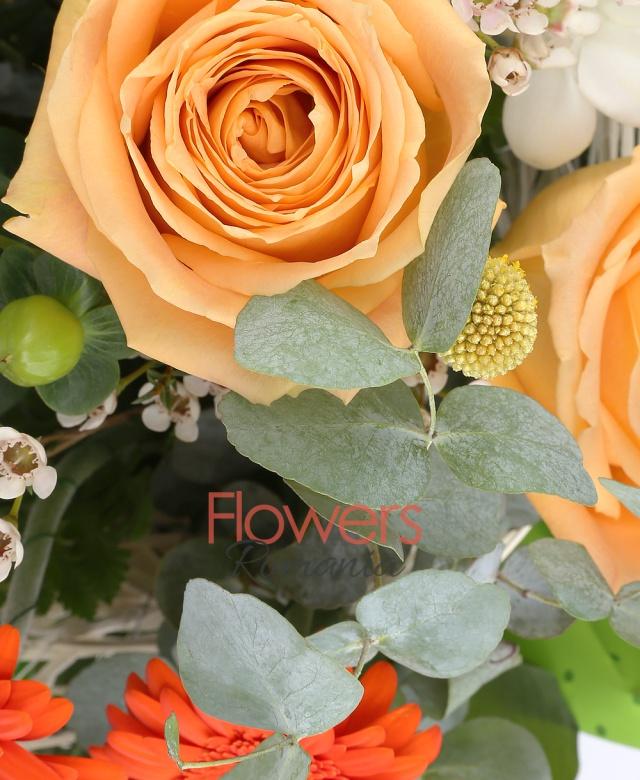 3 trandafiri crem, 3 gerbera portocalii, 3 hypericum verde, 3 frezii albe, 3 leucadendron roșu, 2 waxflower alb, 3 panicum, 5 eucalypt, 5 alspidistra, cuib
