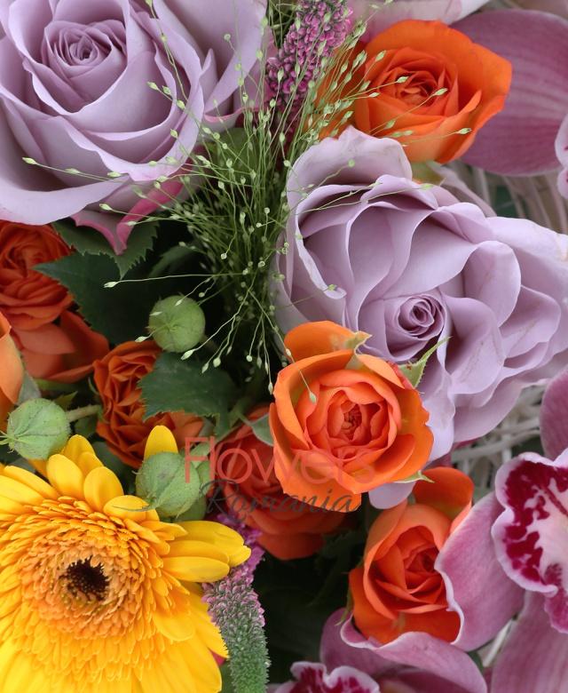 5 trandafiri mov, 3 cupe orhidee roz, 5 gerbera galbena, 5 miniroze portocalii, 3 panicum, 5 veronica roz, 3 hypericum rosu, 5 eucalypt, cuib
