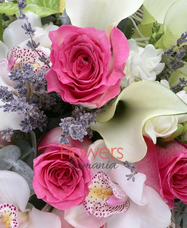 5 trandafiri ciclam, 5 cale albe, 3 anthurium verde, 3 cupe orhidee cymbidium albe, 5 frezii albe, 1/2 pachet levănțica, 3 eucalypt, cuib