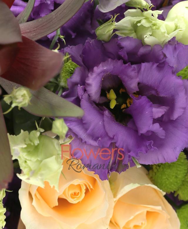 3 trandafiri crem, 3 lisianthus mov, 5 santini verde, 3 leucadendron, mușchi, cutie
