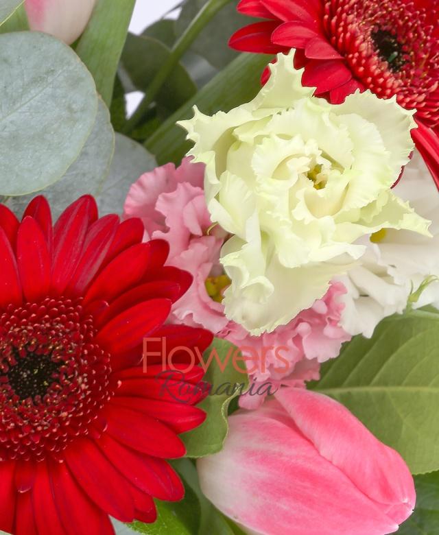 5 gerbera rosii, 7 lalele rosii, 2 lisianthus roz, 2 eucalypt, 5 salal