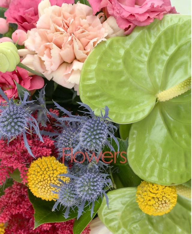 2 anthurium verde, 5 astilbe rosii, 5 garoafe cappucino, 3 lisianthus roz, 5 craspedia, 5 gerbera galbene, 2 eryngium, 2 dalii crem, 5 aspidistra, 5 salal, 3 hypericum roz