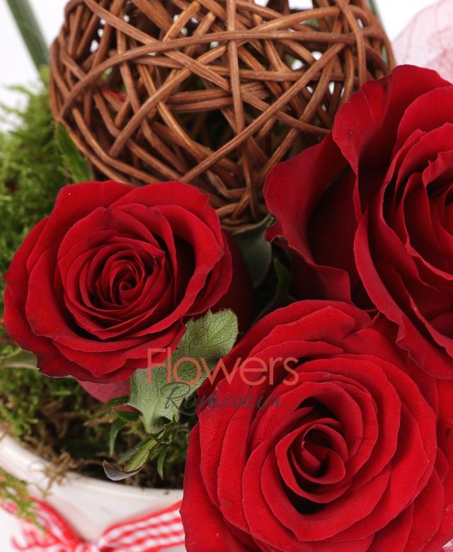 3 trandafiri rosii, 1 branch ball, mușchi, țipirig