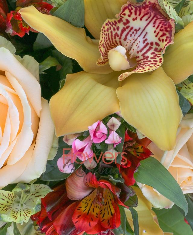 5 trandafiri, 7 orhidee cymbidium galbene, 5 alstroemeria galbene, 5 alstroemeria rosii, 5 bouvardia, 5 ferigă, 10 salal