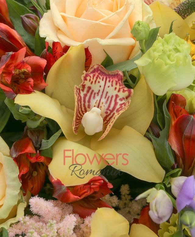 10 trandafiri peach avalanche, 5 veronica roz, 6 cupe cymbidium galbene, 3 astilbe roz, 8 frezii mov, 6 lisianthus verde, 3 alstroemeria galbene, 5 alstroemeria rosii, 15 salal