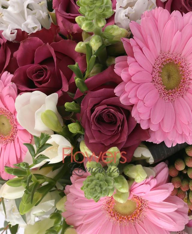 7 trandafiri grena, 5 gerbera roz, 3 brunia roșie, 10 frezii albe, 5 cupe orhidee albe, 5 black tide, 2 eucalypt, 5 salal, cuib