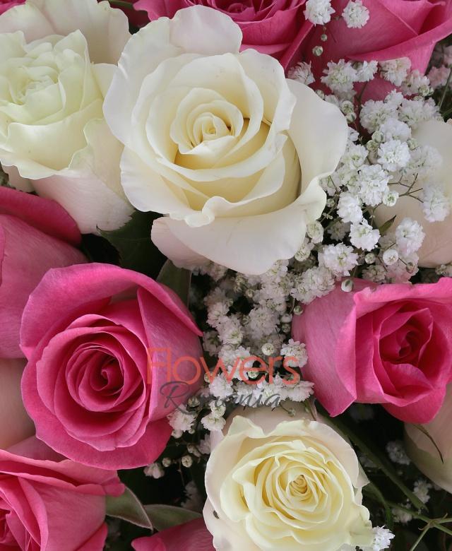 13 trandafiri albi, 18 trandafiri roz, 3 gypsophilla, 2 eucalypt