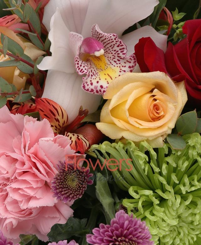 5 trandafiri rosii, 4 trandafiri galbeni, 2 garoafe roz, 2 crizanteme green, 2 alstroemeria rosii, 5 gerbera portocalii, 3 cupe cymbidium galbene, 3 orhidee albe, 3 santini roz, 2 bupleurum, 2 eucalypt, 3 aspidistra